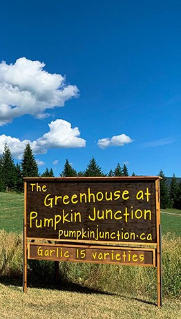 Pumpkin Junction sign with blue sky background.