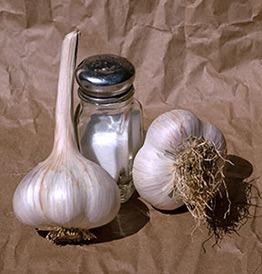 Two bulbs of Music garlic.