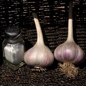 Two bulbs of Siberian garlic.